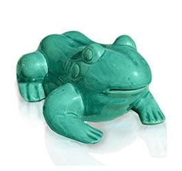 Żaba szkliwo